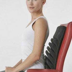 Detensor Back Support Pillow for Chair and/or Car, Truck Seats